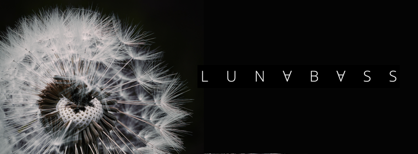 Facebook Cover Lunabass Dandelion 2