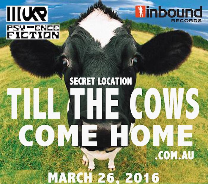 cows edit
